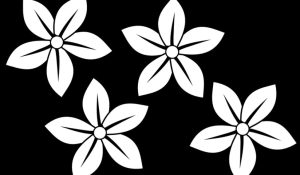 flower clipart flowers sampaguita clip drawing drawings hawaiian pointed vector sketch clipground graphic paintings eps paintingvalley clipartmag sketches hibiscus