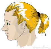 ponytail clipart - clipground