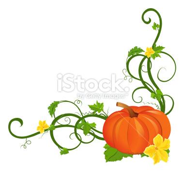 pumpkin vine clipart - clipground