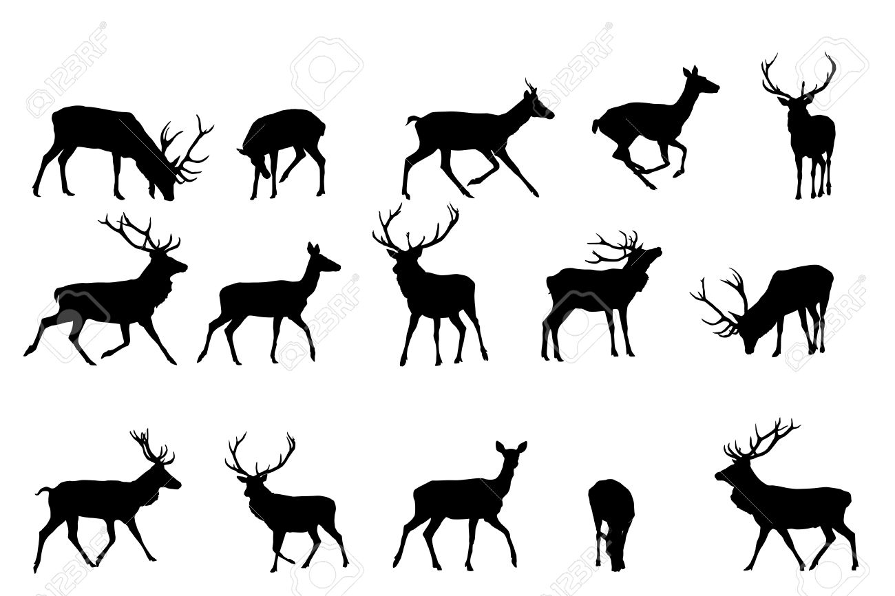 Red Deer Clipart 20 Free Cliparts