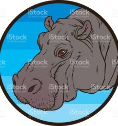 hippopotamus amphibius or river horse stock vector art 479057736  [ 1024 x 1024 Pixel ]