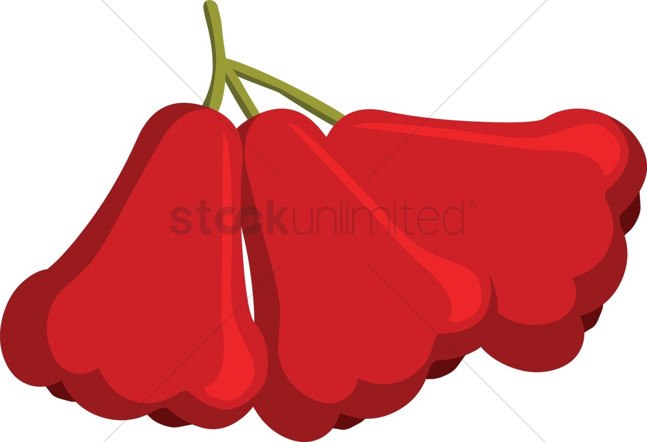 hight resolution of rose apple clipart
