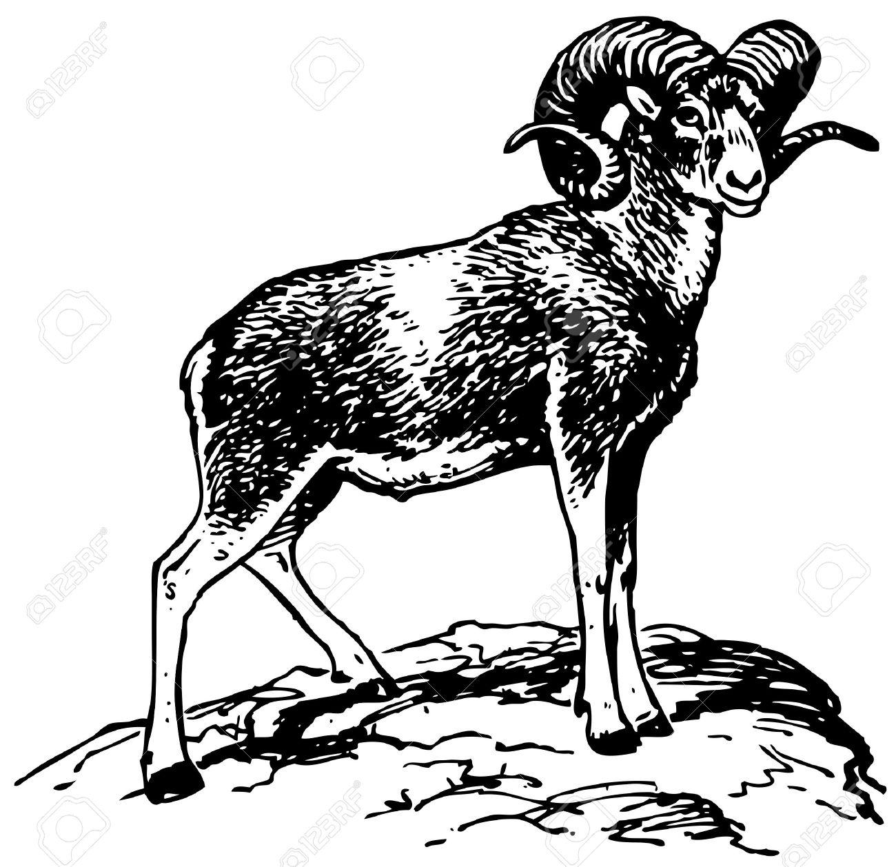 Sheep Mountain Clipart