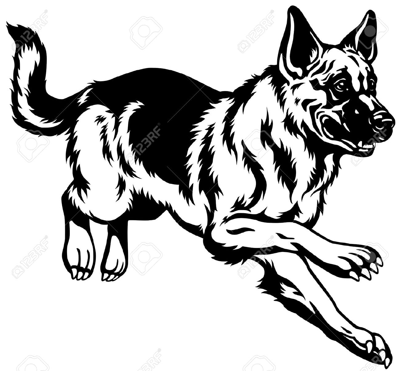Shepherd Dog Clipart