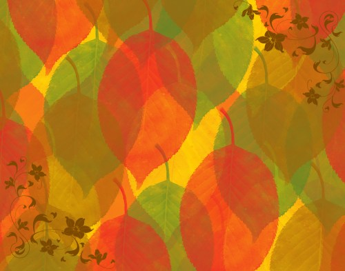 small resolution of fall color wallpaper background nature wallpaper