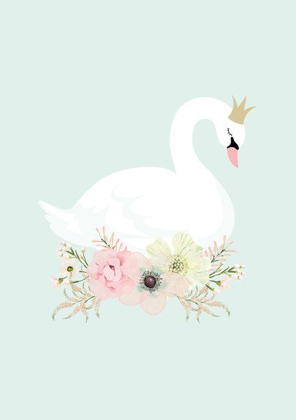 Swan Mirror Clipart Clipground