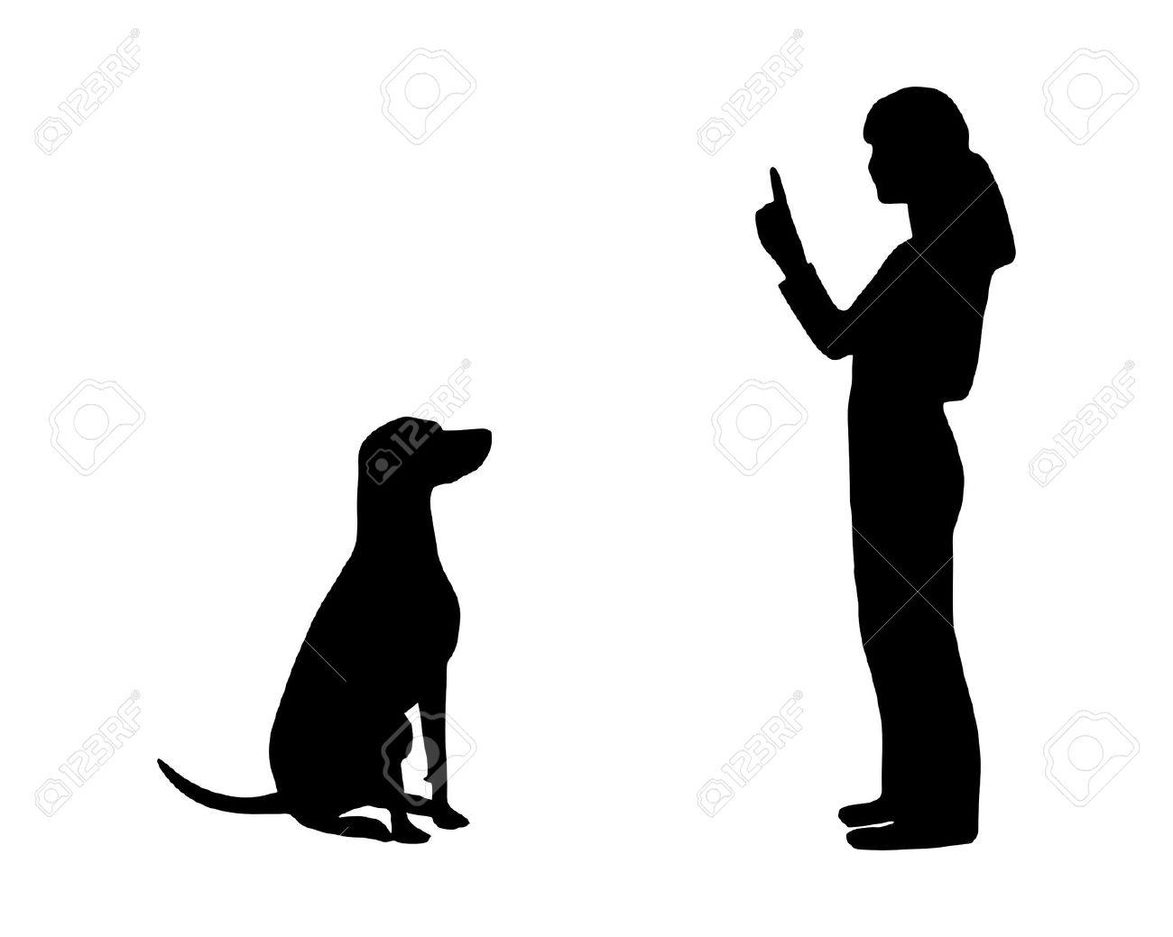 Dog Walking Silhouette Human