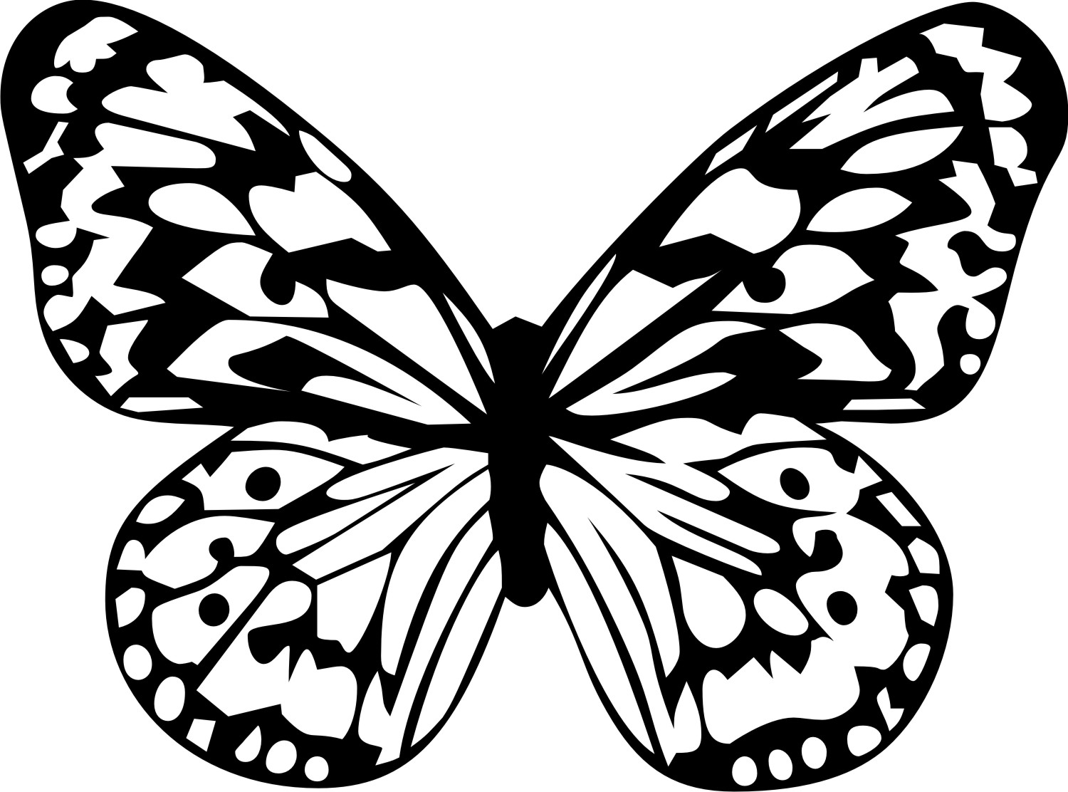 20 Tropical Butterfly Clip Art Printable Ideas And Designs