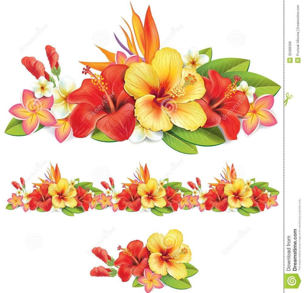 medium resolution of similiar tropical flower border keywords