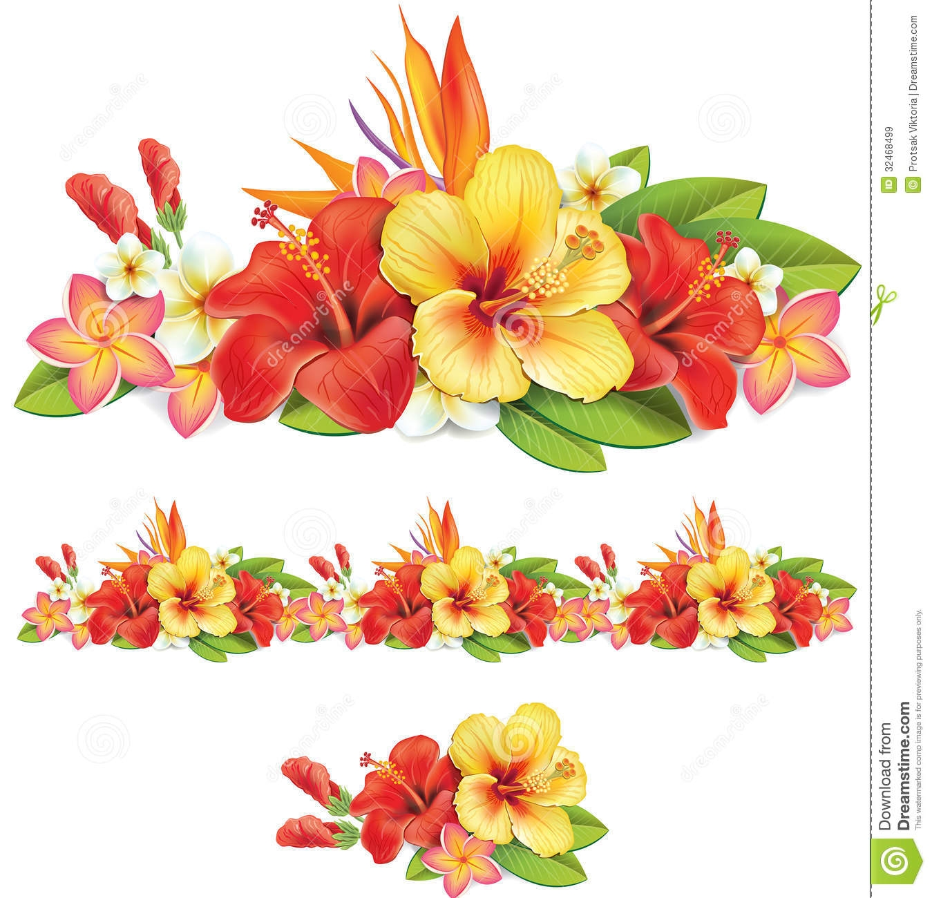 hight resolution of similiar tropical flower border keywords