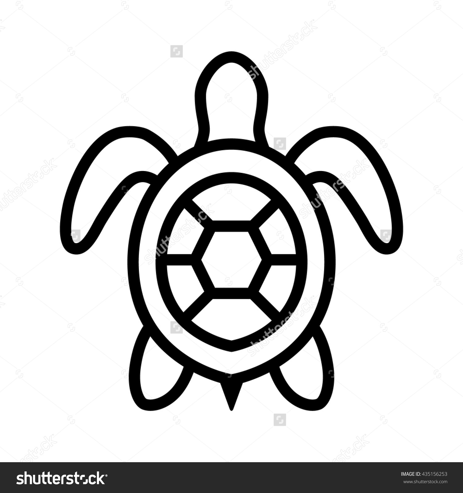 Turtle Clipart Top View