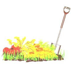 clipart garden vegetable background gardening border vegetables grass harvest autumn clipground cute shovel isolated illustrations