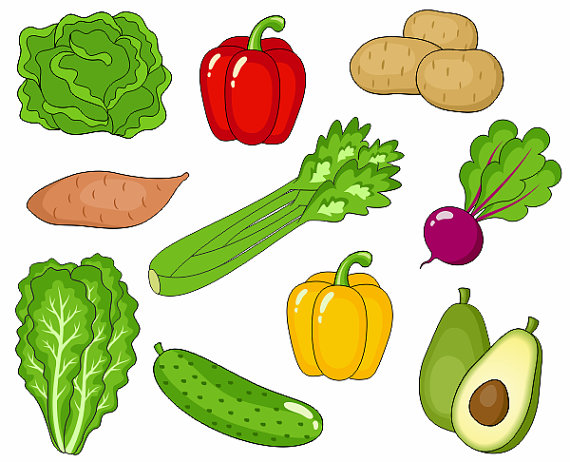 vegetable clipart - clipground