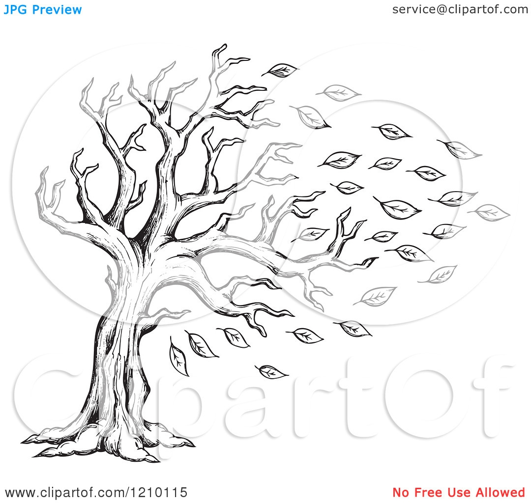 White Leaf Nature Clipart 20 Free Cliparts