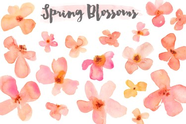 watercolor clipart flower blossoms winter clip flowers spring orange pink these clipartpanda patterns clipground cliparts blossom library presentations websites reports