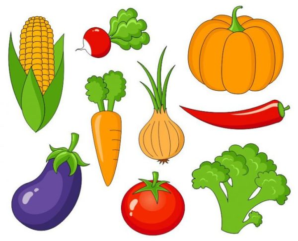 winter vegetables clipart - clipground