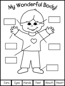 worksheet for kindergarten my body islamic clipart