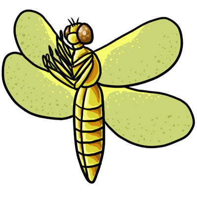 yellow dragonfly clipart - clipground