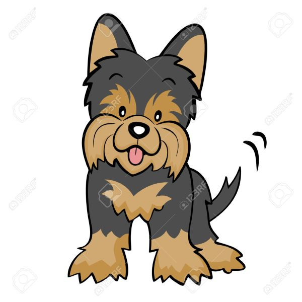 Yorkshire Terrier Clipart - Clipground