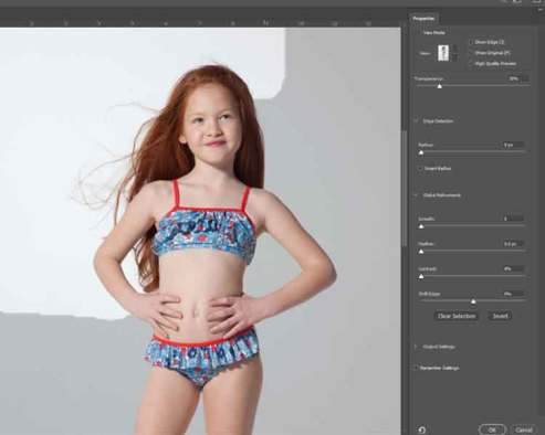 Photo Background remove by using Refine tool