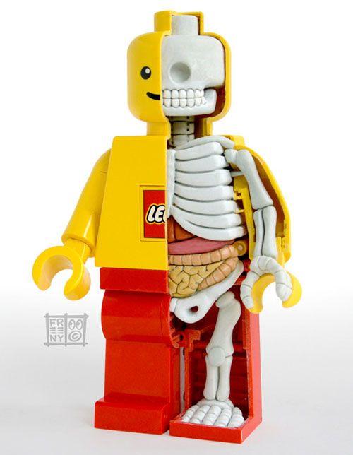 anatomia LEGO