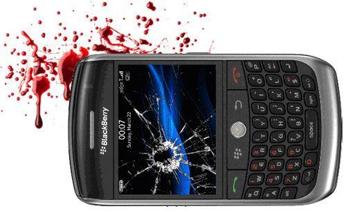 blackberry-dead