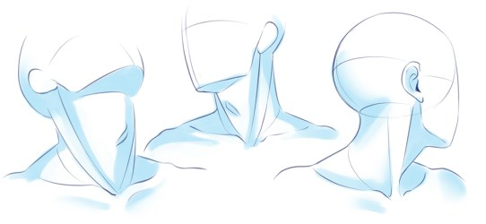 Learn from Anatomy to Improve Your Poses Art Rocket