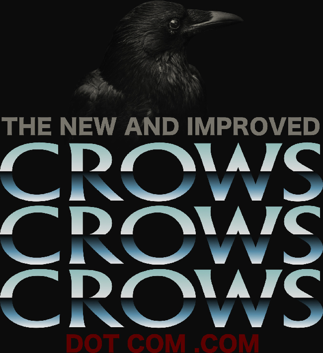 "Photo of a black crow, set over the text, ""The new and improved Crows Crows Crows dot com.com."""