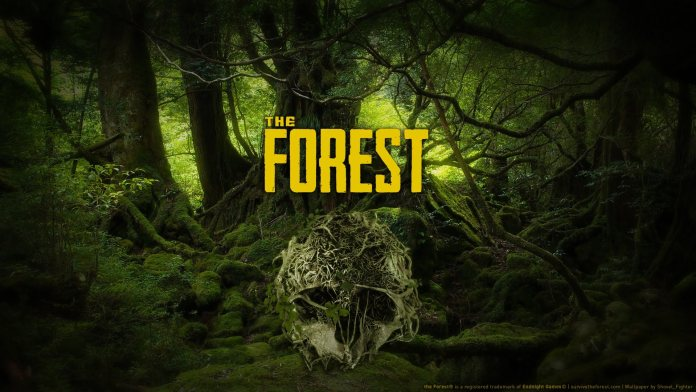 Halloween - The Forest