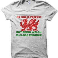 No One Is Perfect But Being Welsh Is Close Enough t-shirt by Clique Wear