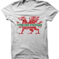 Wales football t-shirt by Clique Wear