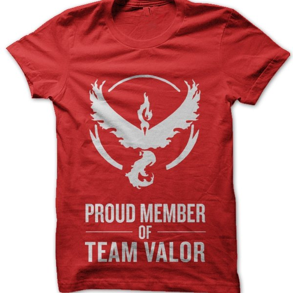 Proud Member of Team Valor t-shirt by Clique Wear