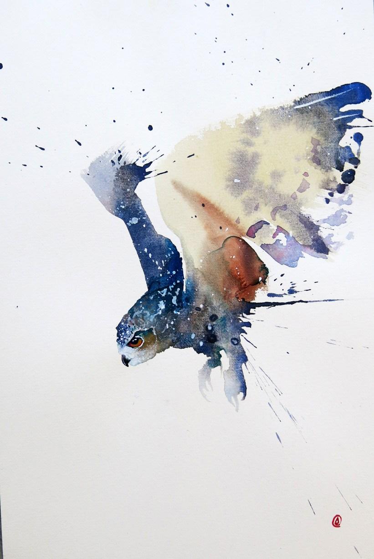 Eagle Eye Owl is Hovering