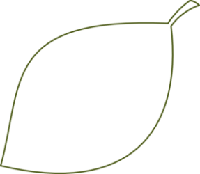 leaf outline clipart clip clear simple vector cliparts clker clipartfox wikiclipart doodle zee shared gclipart library hdclipartall