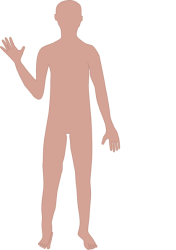 body clipart clip male cliparts human transparent outline adult vector clker library arts