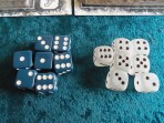 Action dice. The blue ones game with the game. I upgraded my game with the frost ones.