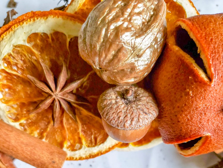 Dried citrus, walnut, Anise star and acorn