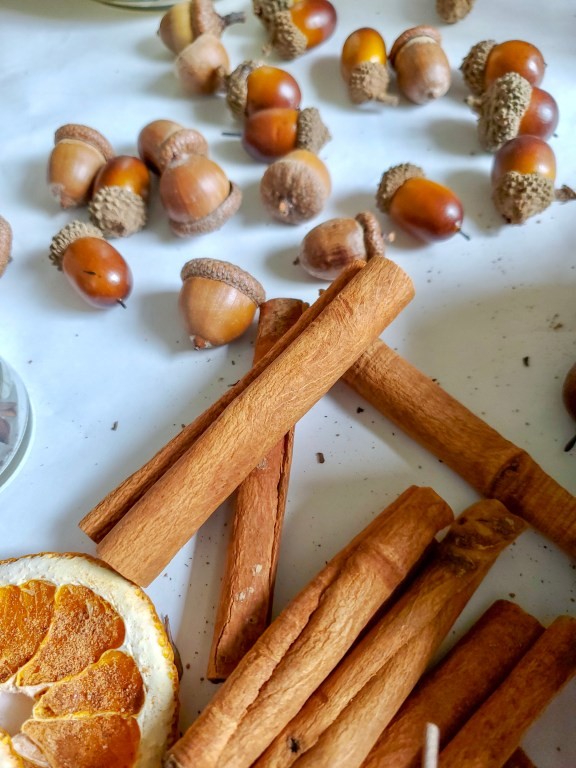 Dried citrus, acorns and cinammon sticks