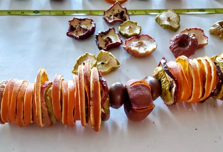 Showing a close up of the dried fruit taking shape