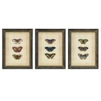 IMAX Butterfly Collection Wall Art - Set of 3 27304-3