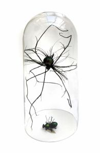 Spider Fly sculpture