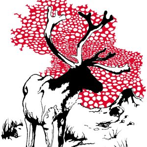Original reindeer drawing with amanita muscaria pattern