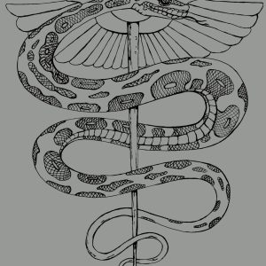 Rod of asclepius hand drawn design by Closet of Mysteries