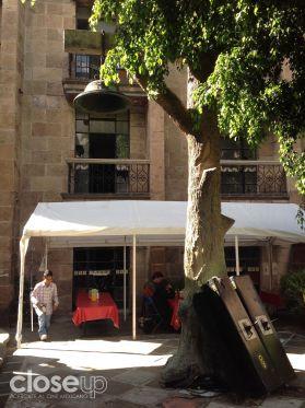 Este es el árbol del que dicen se colgó el creador y dueño original del hotel Posada del Sol (Foto: Close Up)
