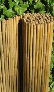 Faire Une Palissade En Bambou : faire, palissade, bambou, Cloture, Bambou:, Types,, Installation, Conseil