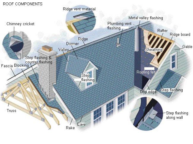 Desain Atap Rumah Plafon Rumah Untuk Ruang Tamu