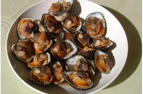Foodista Recipes Cooking Tips And Food News Blood Clams