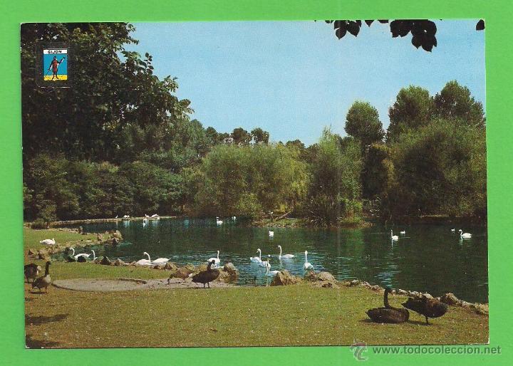 Image result for parque isabel la catolica cisnes despegando