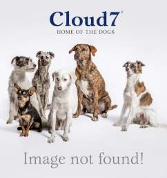cloud7 dog harness central park  [ 2560 x 2560 Pixel ]