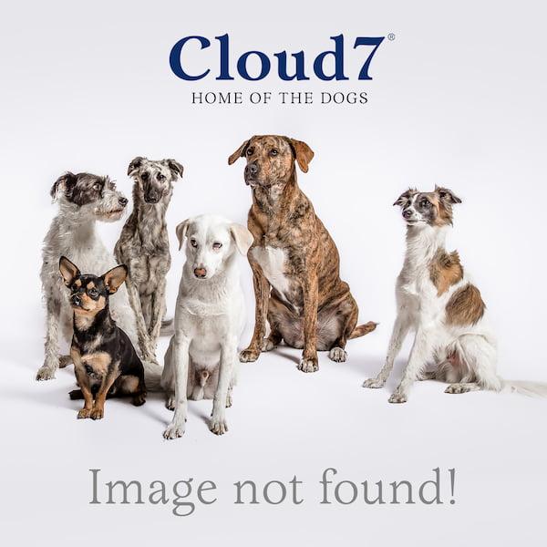 medium resolution of cloud7 dog harness central park
